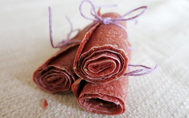 Homemade Fruit Leather for Dogs