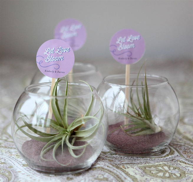 Mini Terrarium Wedding Favor Craft
