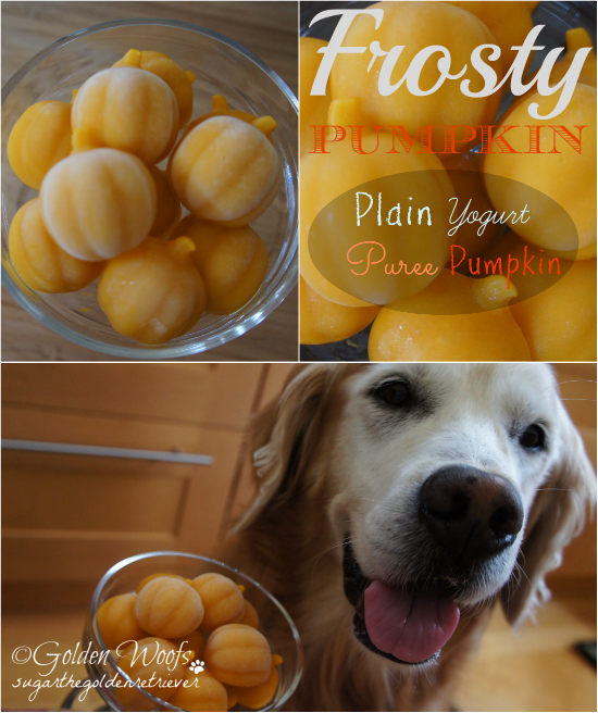 Plain Yorgurt Puree Pumpkin Dog Treats