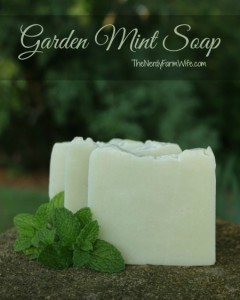 Garden Mint Soap Recipe