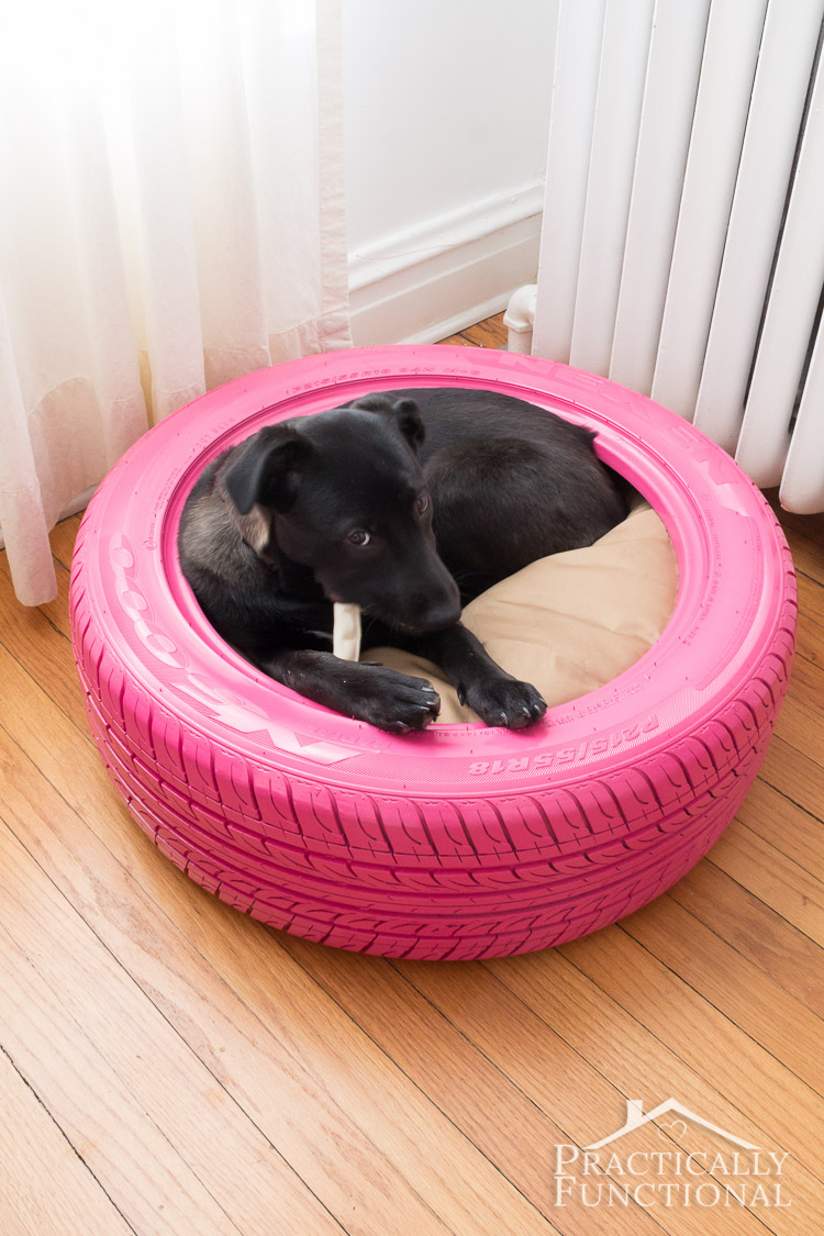 12 Pawsome DIY Dog Beds | The Craftiest Couple