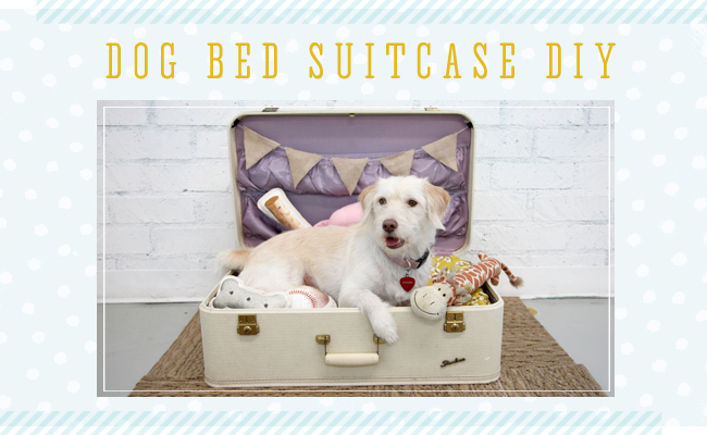 DIY Dog Bed Suitcase