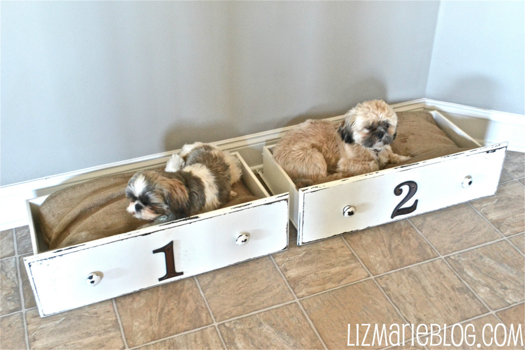 Drawer Dog Beds