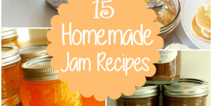 15 Homemade Jam Recipes You Have To Try